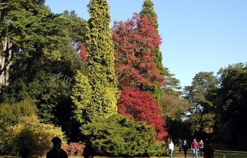"""Botanisch en geografisch arboretum van """"La Gernelle"""""""