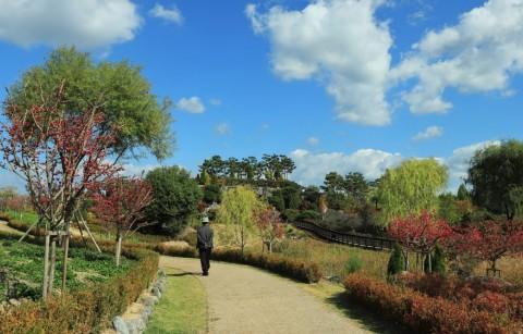Arboretum Puurs