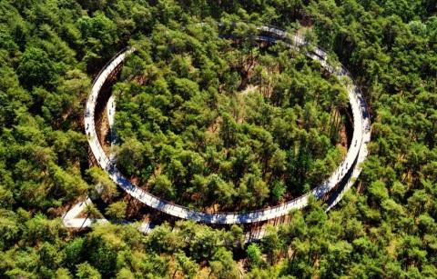 Fietsen door de bomen - Bosland, Hechtel-Eksel