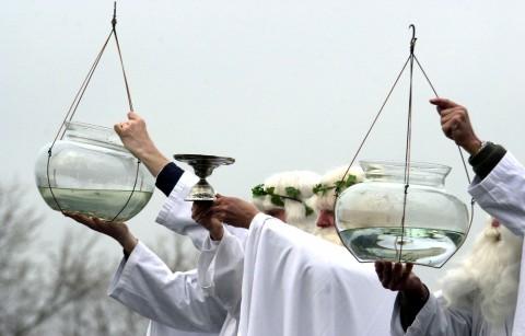 Het Historische 'Jaarlijkse' Krakelingenfeest