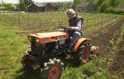 De wijngaarden Coude-à-Coude