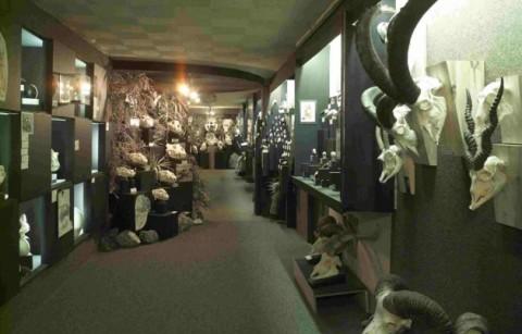 Museum Schedelhof