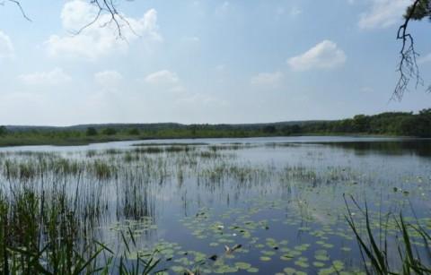 Vallei van de Ziepbeek