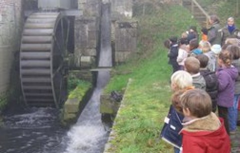 Watermolen van Sint-Gertrudis-Pede