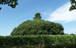Tumulus van Glimes