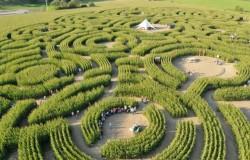 Het labyrint