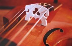 Centrum voor Muziek Bouw