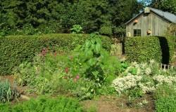 Biologische tuin