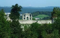 Overblijfselen van het Gravenkasteel van Rochefort